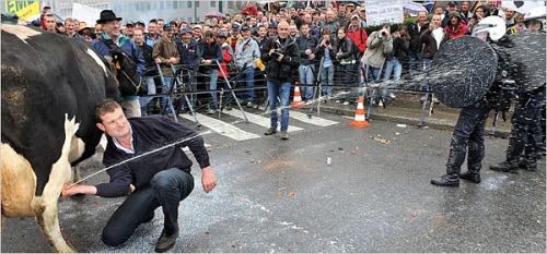 Media_httpgraphics8nytimescomimages20091005businessglobalmilkprotest600jpg_kujaoinzatswugr