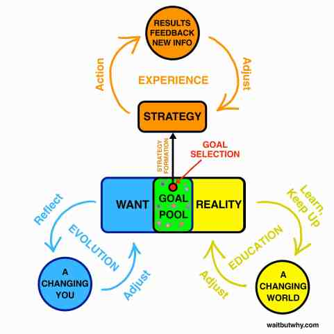 Software - Reality Loop
