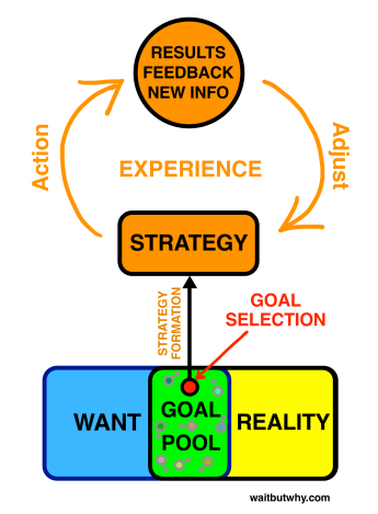 Software - Strategy Loop
