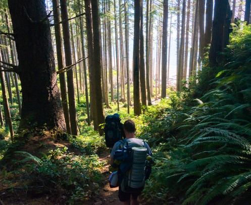 Backpacking in Olympic National Park on the Pacific Coast
